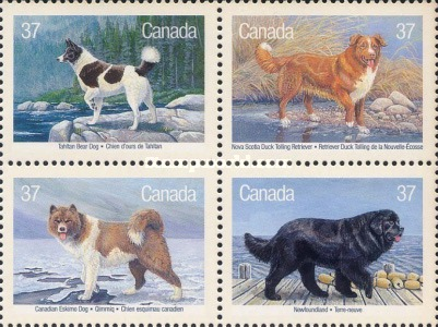 [Canadian Dogs, type ]