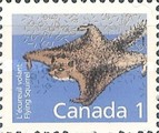 [Canadian Mammals, type ALZ]