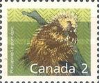 [Canadian Mammals, type AMA]