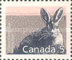 [Canadian Mammals, type AMC]