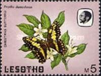 [Butterflies, Tip PT]