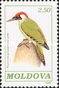 [Birds, type H]