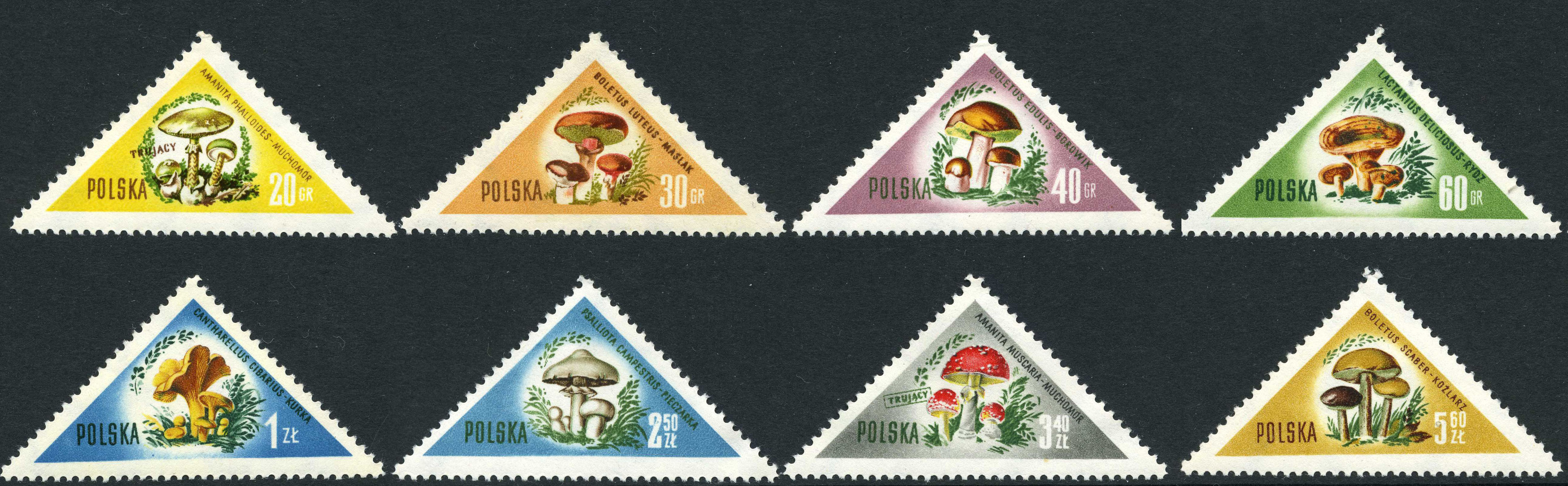 postage stamp design - poland 1959 triangle stamps
